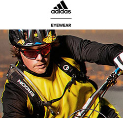 adidas Sunglasses online at Sunglasses Shop